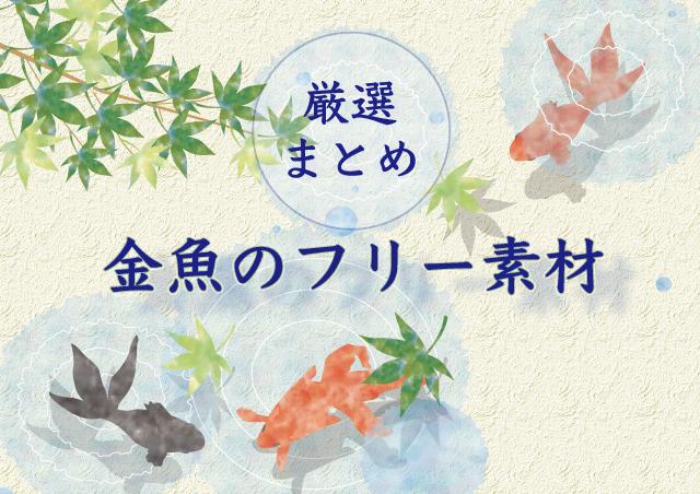 金魚と水紋と青紅葉フリー素材