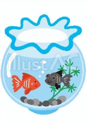 金魚鉢の中で水草と小石があって泳いでいる赤い金魚と黒い金魚のイラスト