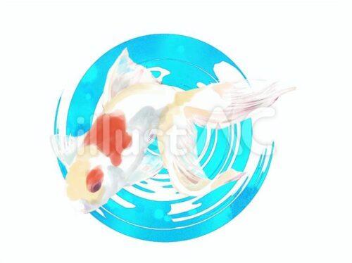 金魚一匹のイラスト